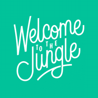Creative IT est sur Welcome To The Jungle